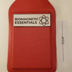 Magnet for biomagnetism.