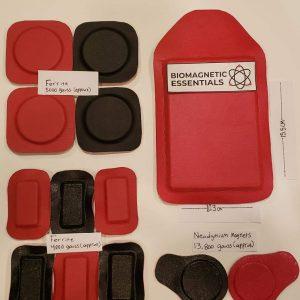Magnets for biomagnetism biomagnetic magnets